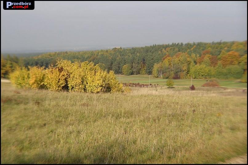 Oglądasz obraz z artykułu: Czarek Słoniewski