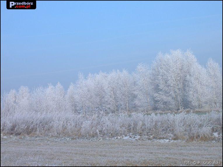 Oglądasz obraz z artykułu: Majowa Góra w zimowej szacie