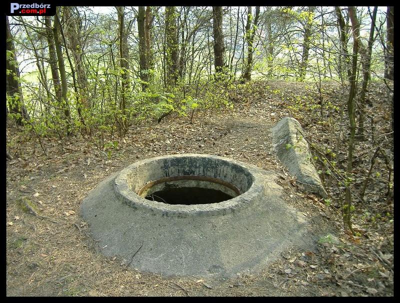 Oglądasz obraz z artykułu: Majowa Góra wczesną wiosną