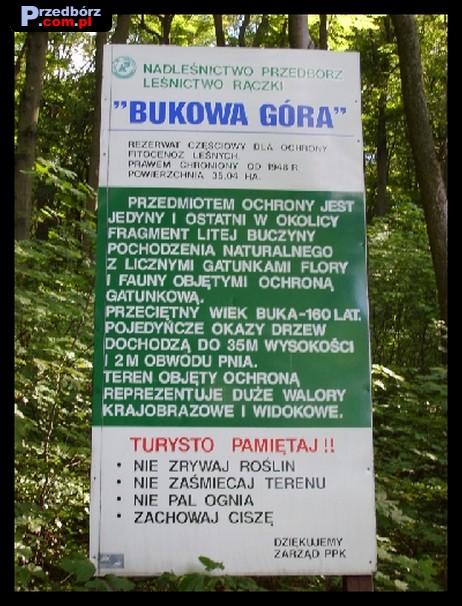 Ogl膮dasz obraz z artyku艂u: Zdj臋cia Przedborza i okolic - cz臋艣膰 I